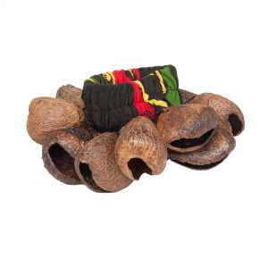 Bracelet Shaker - Pangi with rasta coloured elastic strap. It has a rasta coloured elastic strap with brown Pangi shells attached all the way around.