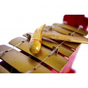 This is a close up image of a Drums for Schools standard gamelan, showing keys with beater