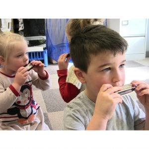 Image of Harmonica - Mouth Organ in C being played